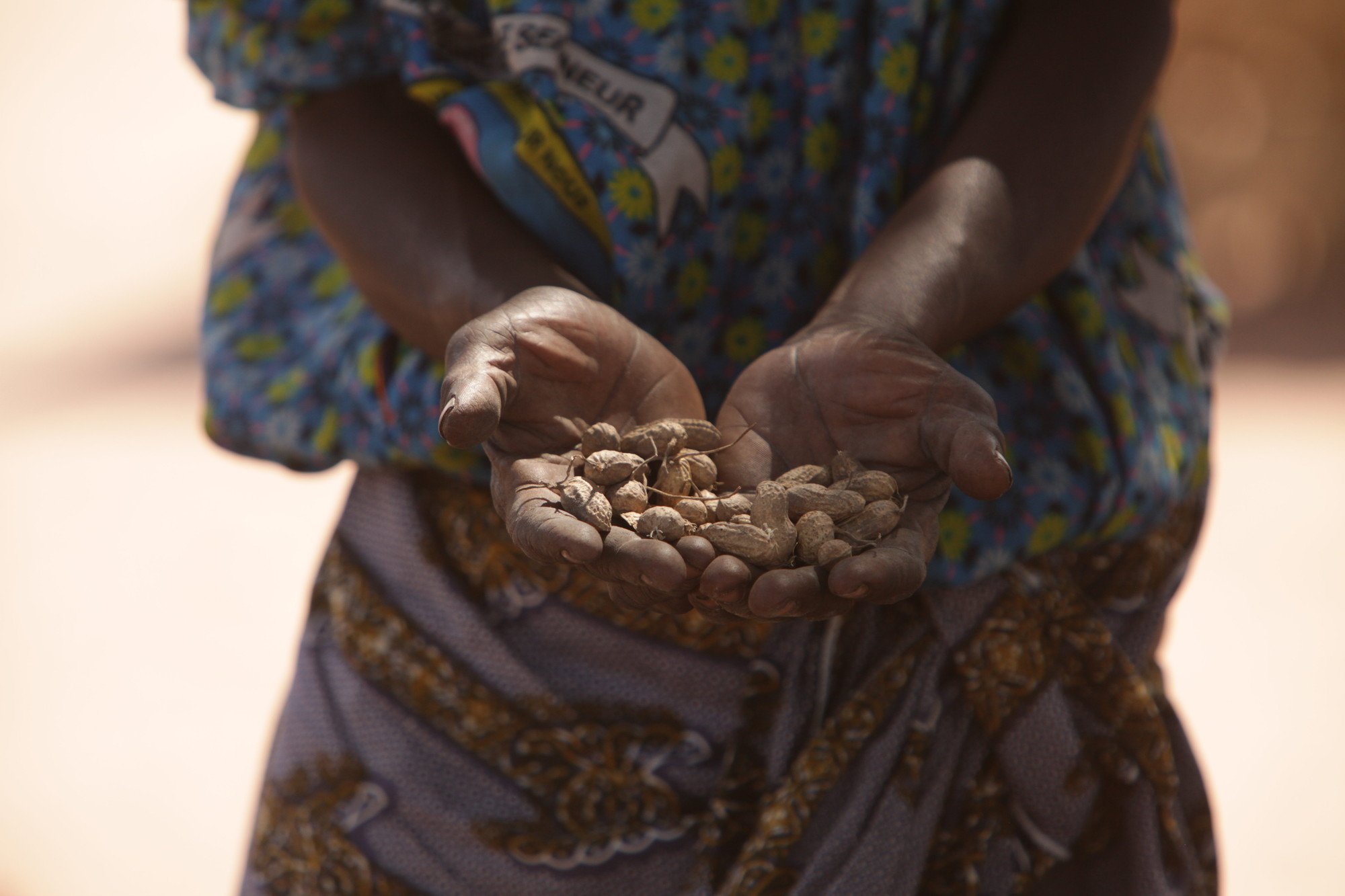 Women also join together on new projects, including a system for loaning groundnuts to families who do not have enough to plant.