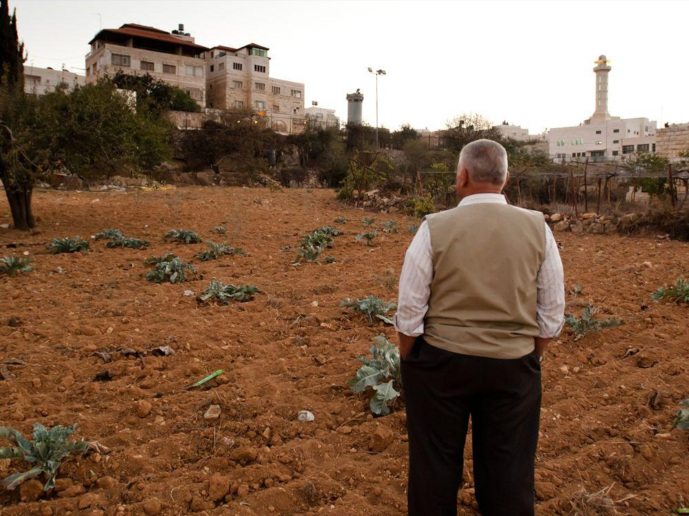 """<span class=""""photo-caption"""">Abdel Majid Al-Khatib owns land in the West Bank near an Israeli settlement and Israeli military tower. This is considered marginal land because it is near the Israeli separation wall and under threat of confiscation. Al-Khatib and other farmers will benefit from a MCC-supported water project that will be implemented later this year by The Centre for Agricultural Services.</span><span class=""""photo-credit"""">MCC Photo/Ryan Rodrick Beiler</span>"""
