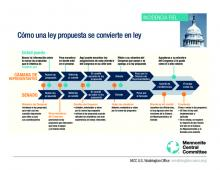 Spanish version- how a bill becomes a law