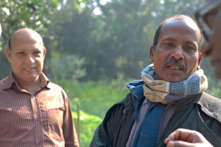 better yields in Bangladesh