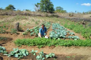 MCC engineeer Jon Viducich kneels in front of a vegetable garden watered by a sand dam constructed by the Christian Council of Mozambique in Phiri-meque, Tete province, Mozambique. The garden was cultivated using conservation agriculture principles. The final stages of the sand dam were completed in May 2010.