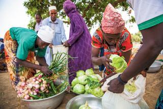 Burkina Faso community garden