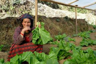 Female farmer holding vegetables