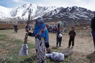 A woman plants trees in rural Afghanistan.