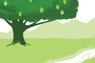 Haiti tree illustration