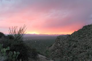 the sun sets over tucson, arizona
