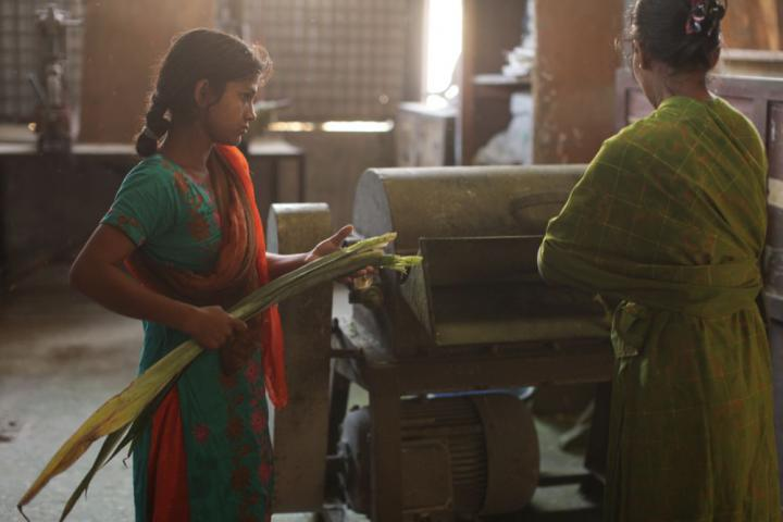 Nazma Begum, left, and Beauty Begum operate a machine that crushes leaves and separates the fiber used to make thread.