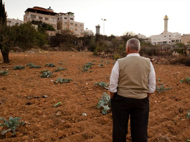 Abdel Majid Al-Khatib owns land in the West Bank near an Israeli settlement and Israeli military tower. This is considered marginal land because it is near the Israeli separation wall and under threat of confiscation. Al-Khatib and other farmers will benefit from a MCC-supported water project that will be implemented later this year by The Centre for Agricultural Services.