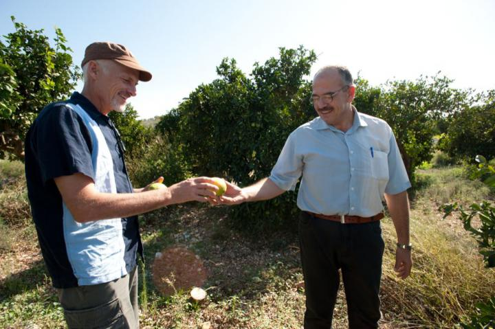 Dan Wiens, left, coordinator of MCC's water and agriculture programs, and Abdul-Latif Khalid, a hydrologist working for the Palestinian Hydrology Group, visit Khalid's uncle's orange grove near the Palestinian village of Jayous.