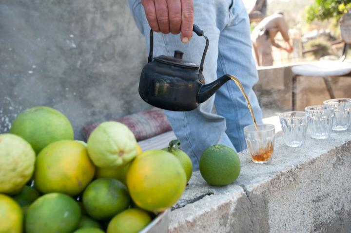 The gift of hospitality in many Palestinian homes in the West Bank includes sweet tea and an abundance of oranges, clementines and guava. MCC-supported water projects increase food production and improve livelihoods in a region that is experiencing drought and on-going water restrictions.