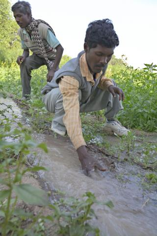 Dry rocky soil in the drought-prone Latehar district of India's Jharkhand state makes it difficult to grow crops year-round. Indrajit Orao, right, and Marwar Orao show how water from ponds built through an MCC-supported food-for-work project now irrigate farmers' fields.