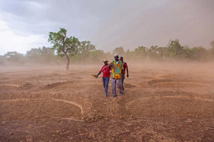 Farmers with half moons dug into soil