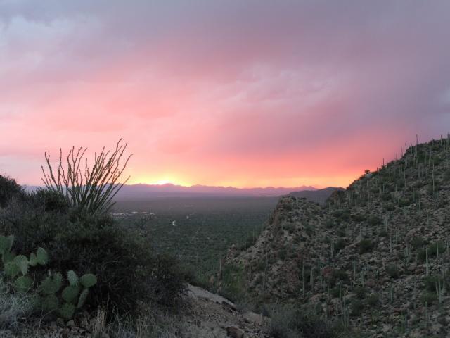 the sun sets over tucson, arizona