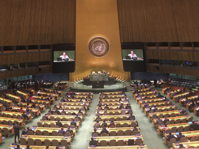 The UNGA meets to discuss the situation in Palestine